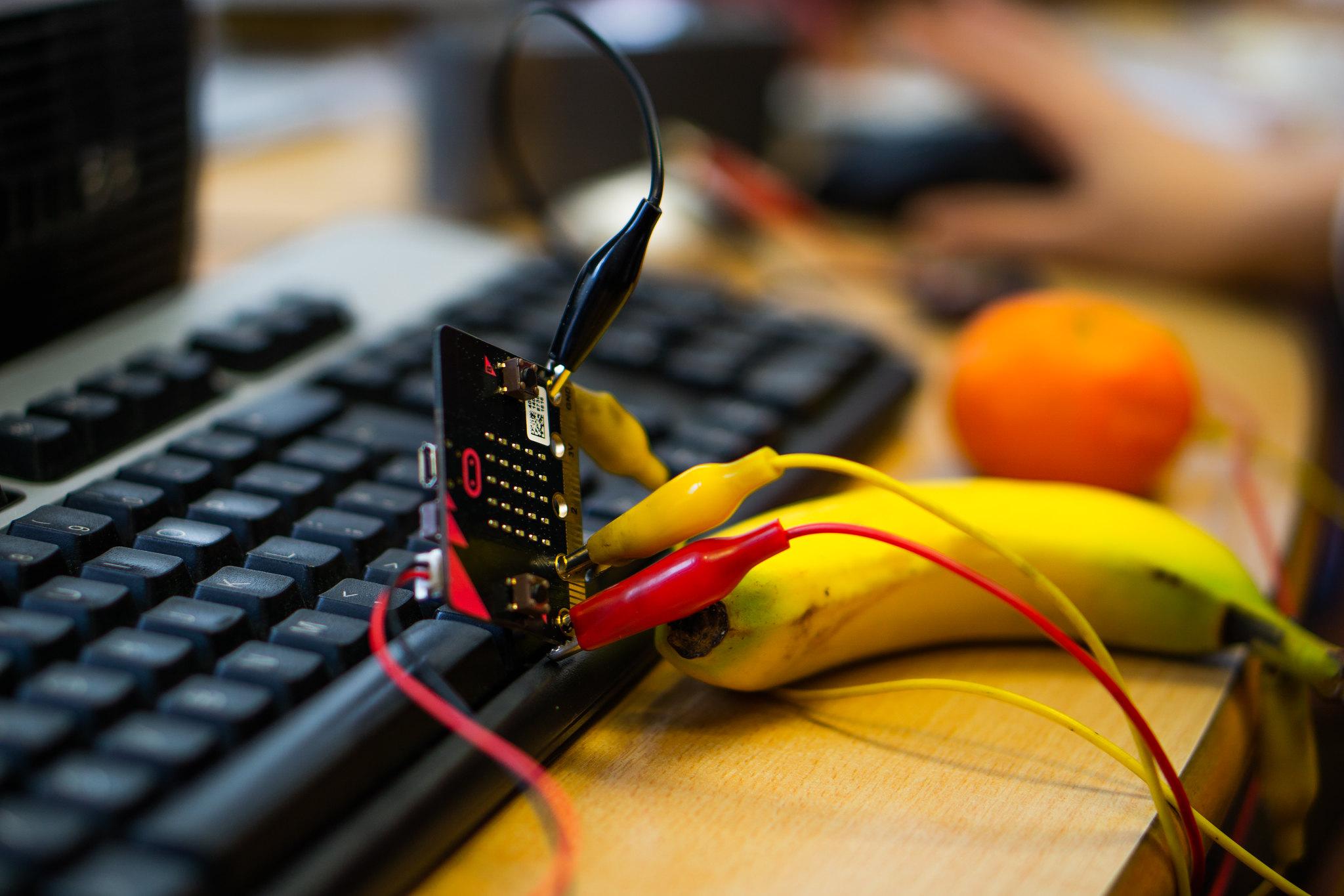 Fruit powered electronics